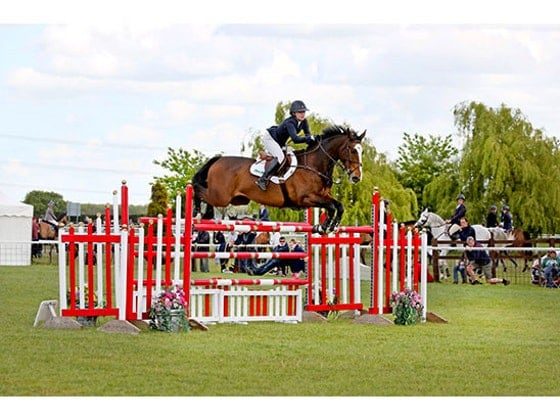 http://winit.yourhorse.co.uk/sweepstakes/win-a-lesson-with-pro-show-jumper-pippa-allen-20821